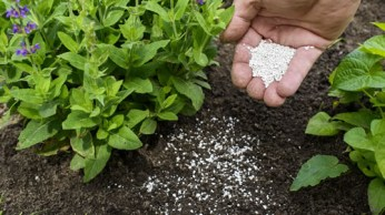 fertilizer-soil-conditioner-small4